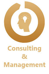 HIM Consulting & Management