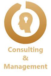 HIM Consulting & Management