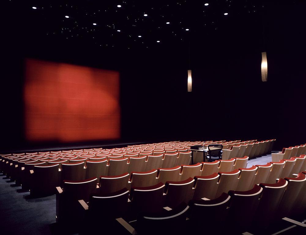 04-Pixar-SR-theatre-contrast-400.jpg