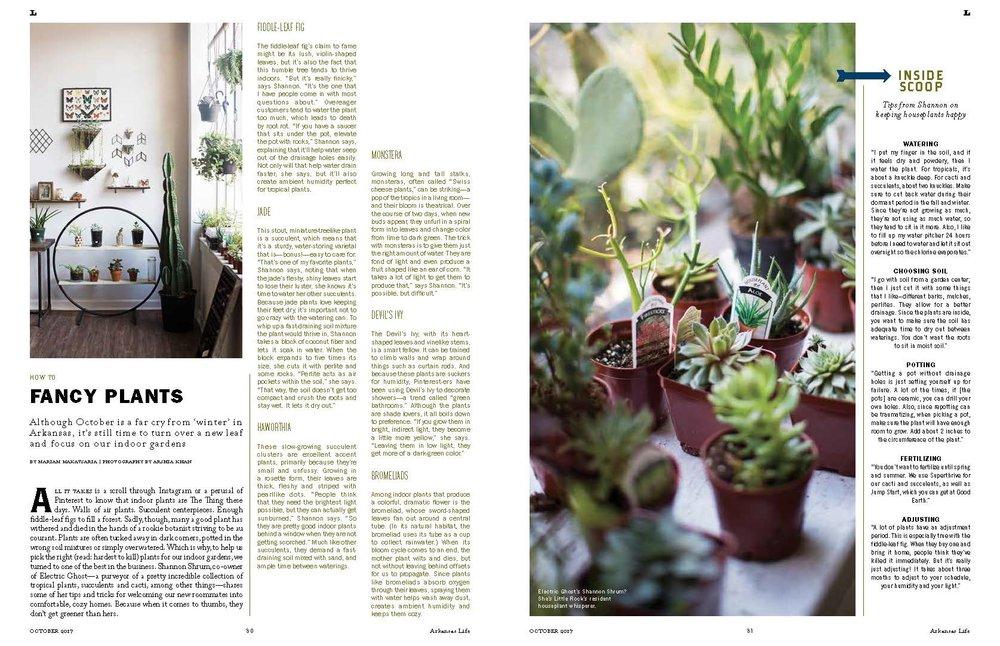 fancy plants.jpg