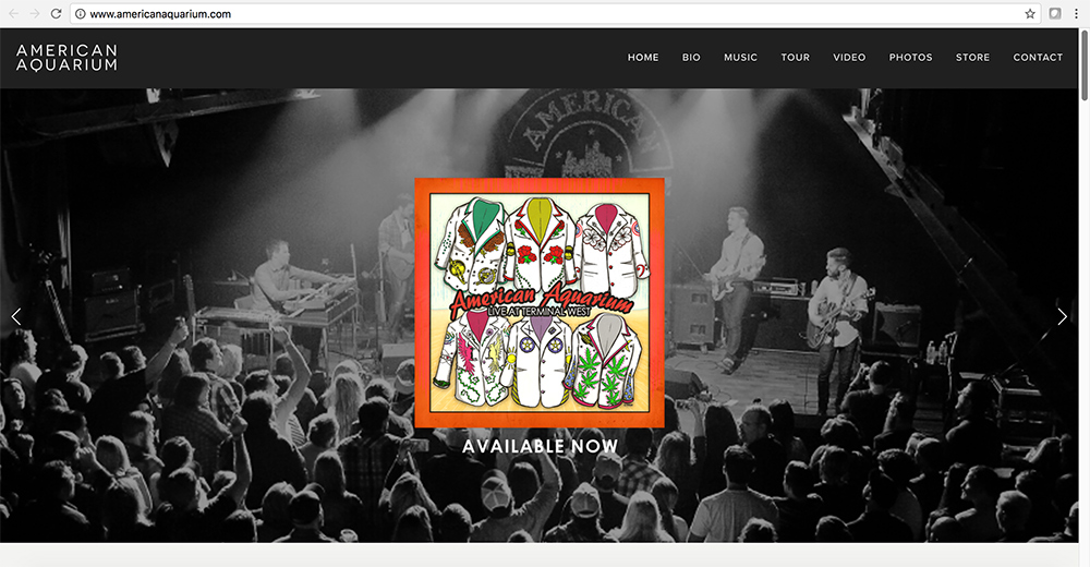 AA_WebsiteScreenshot.jpg