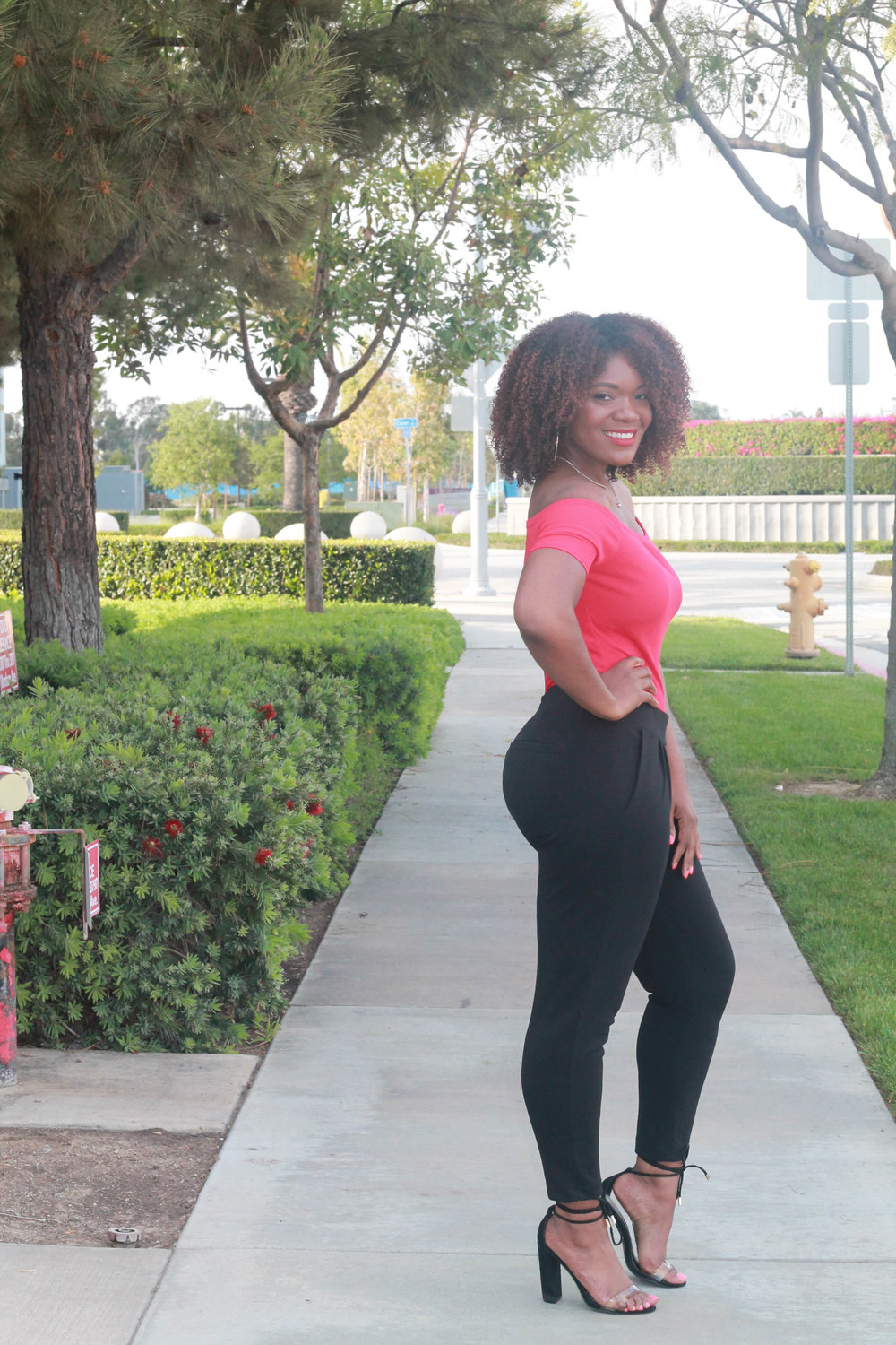 Los Angeles Curvy Blogger