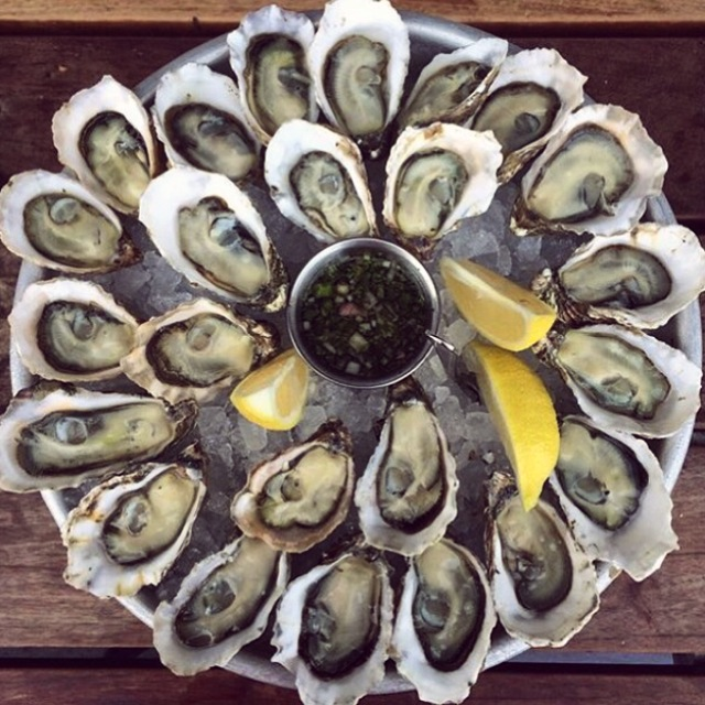 Oysters; San Francisco, California