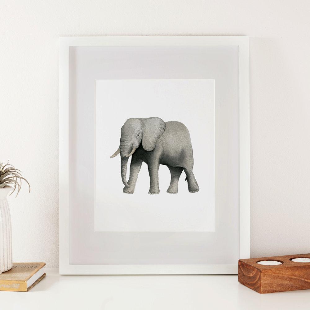 Elephant Watercolor Print - Starting at $18.00
