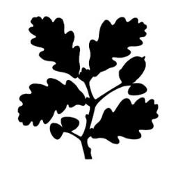 web-coinslogos-05.jpg