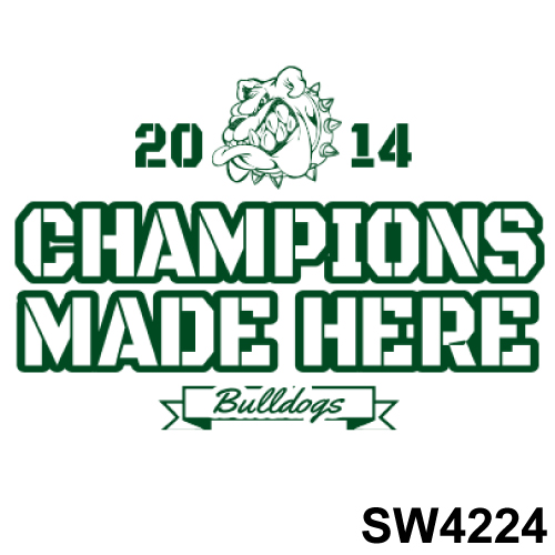 SW4224.jpg