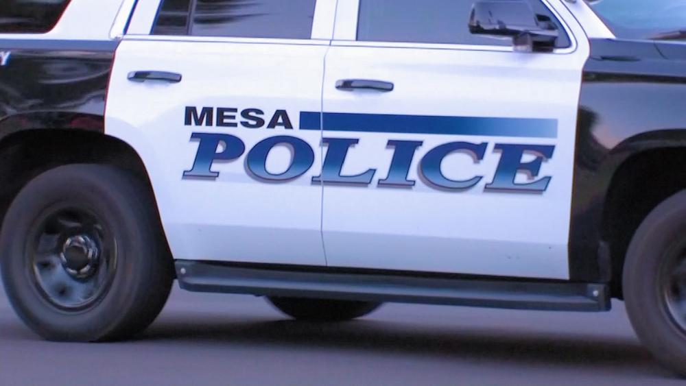 mesa police.png