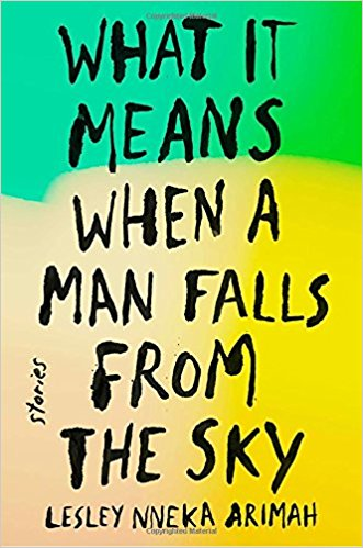 what it means when a man falls from the sky.jpg