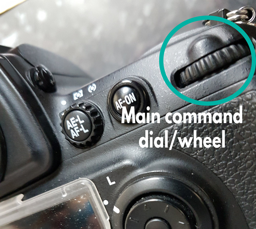 Main command dial/wheel - Located on the back of the DSLR.