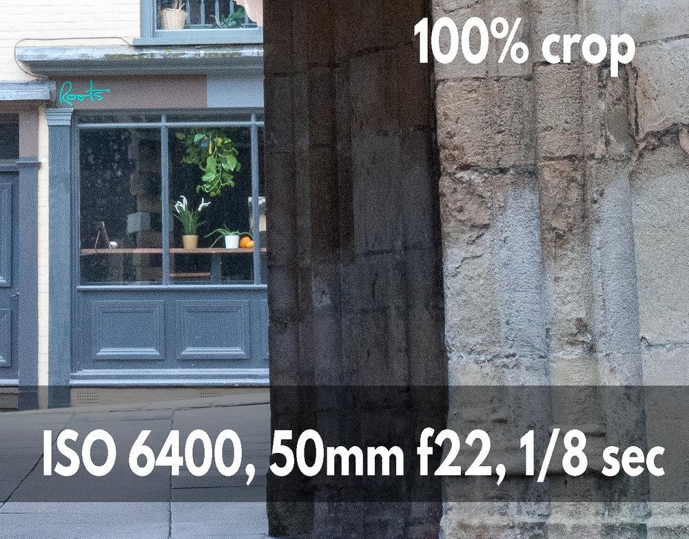 ISO 6400 crop example photo Nikon D700