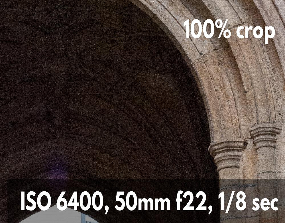 ISO 6400 shadow area crop photo example Nikon D700