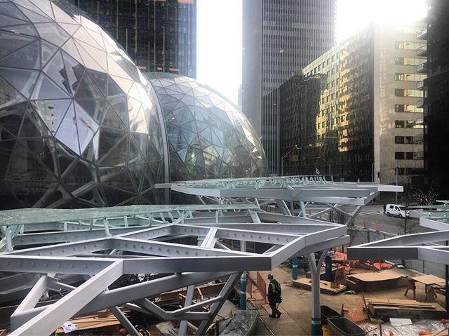#Amazon #biosphere