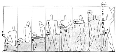 Le Corb Modulor Dimensions