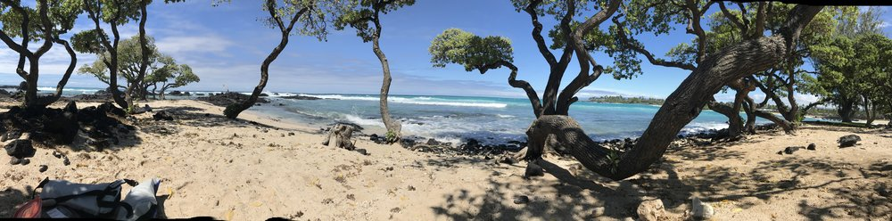 Coming soon, Yoga Retreat;Hawaii, 2019