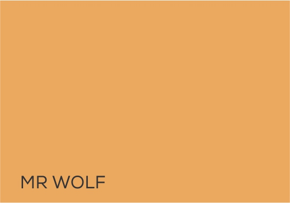 11 Mr Wolf.jpg