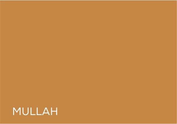 25 Mullah.jpg