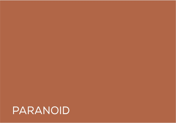 28 Paranoid.jpg