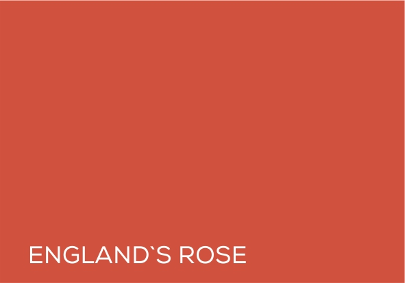 56 Englands Rose.jpg