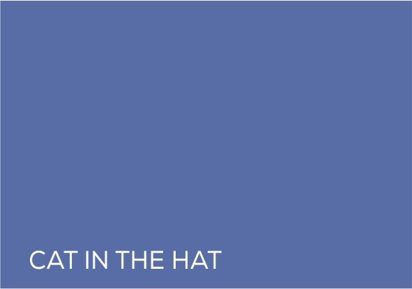 51 Cat in the hat.jpg