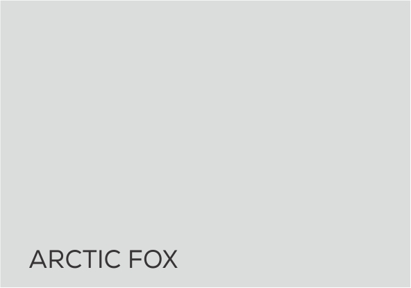 16 Artic Fox.jpg