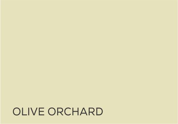 4 Olive Orchard.jpg
