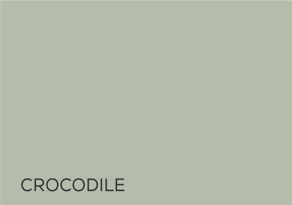 22 Crocodile.jpg