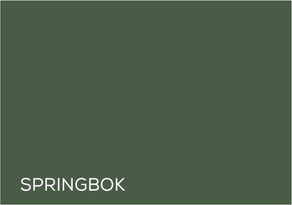 54 Springbok.jpg