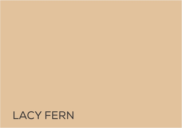 12 Lacy Fern.jpg