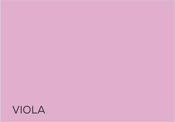 19 Viola.jpg