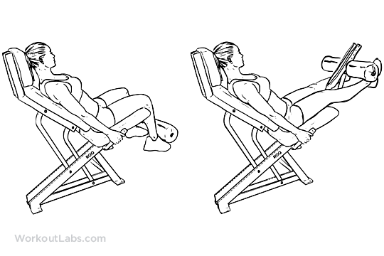 Leg extensions 4 sets of 12 increasing weight 3 sets of 12 decreasing weight.