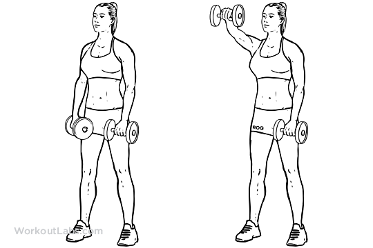Dumbbell front laterals 3x10