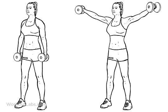Dumbbell side laterals 3x10 alternating with..