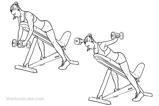 Flat dumbbell flys 3x10 alternating with...