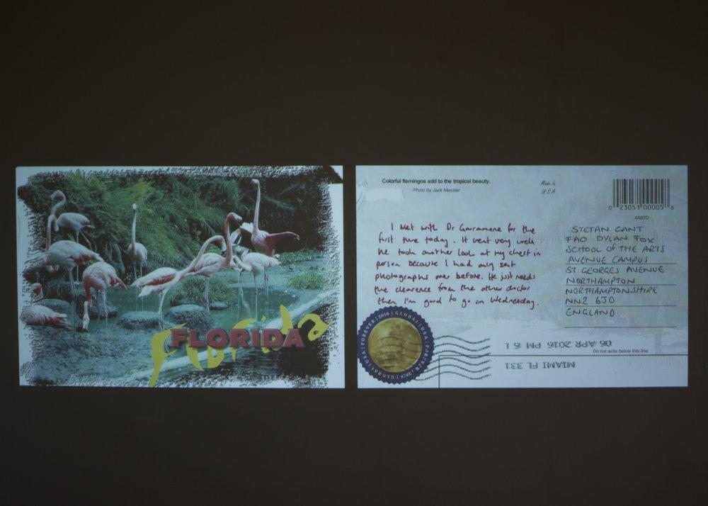 postcardsfromflorida.jpg