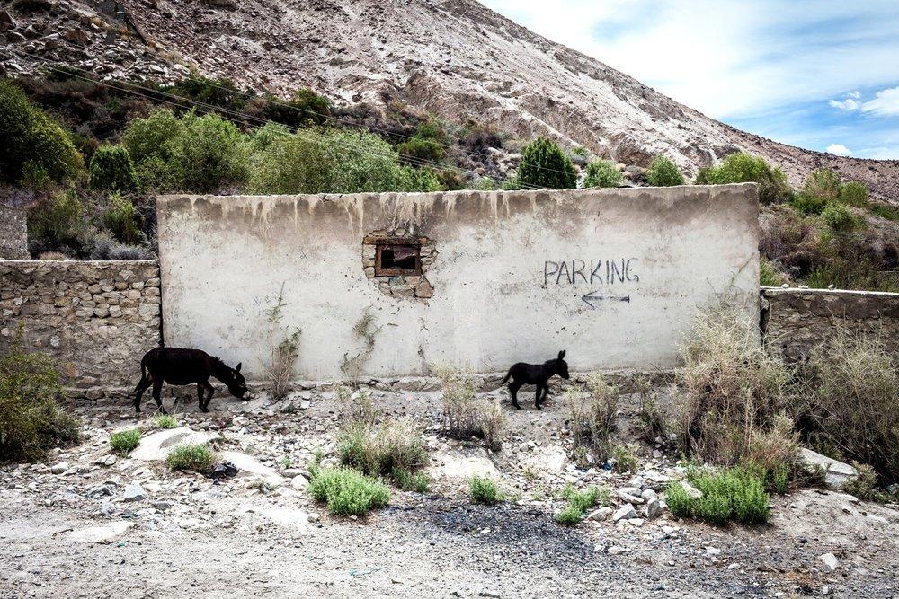 Sumer, Nubra Valley