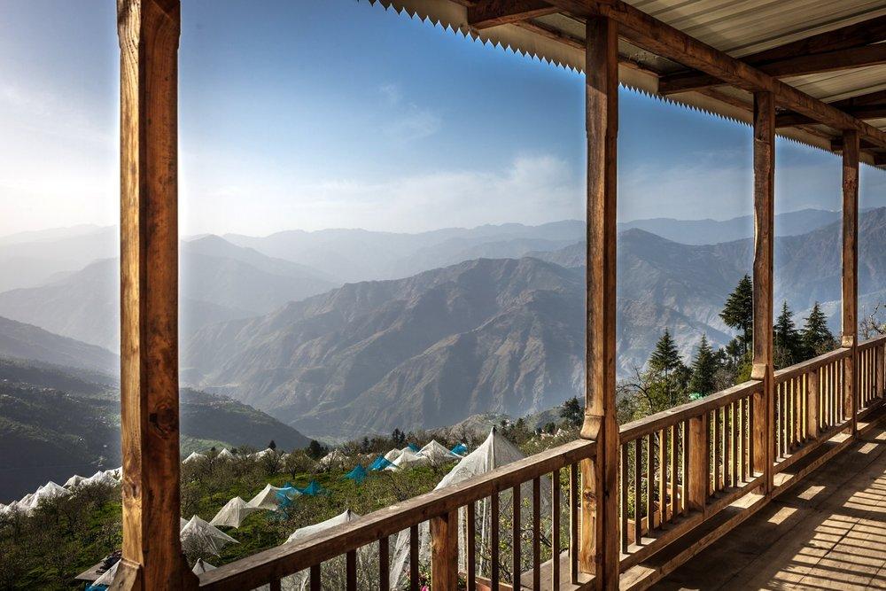 Seetalvan Orchards, Indian Himalayas