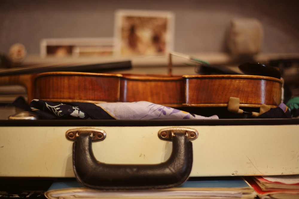 sarah king violin case.jpg