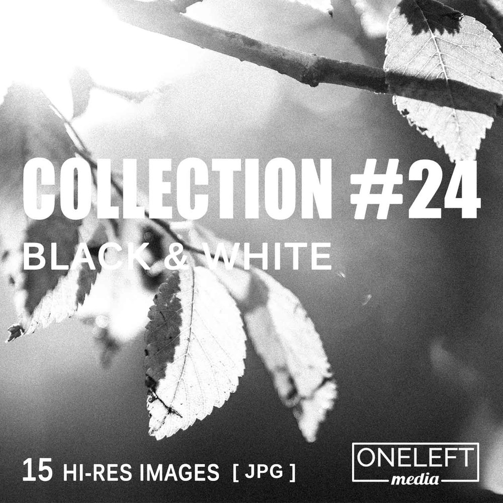 collection-24.jpg