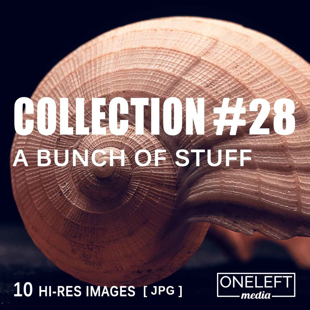 collection-28.jpg