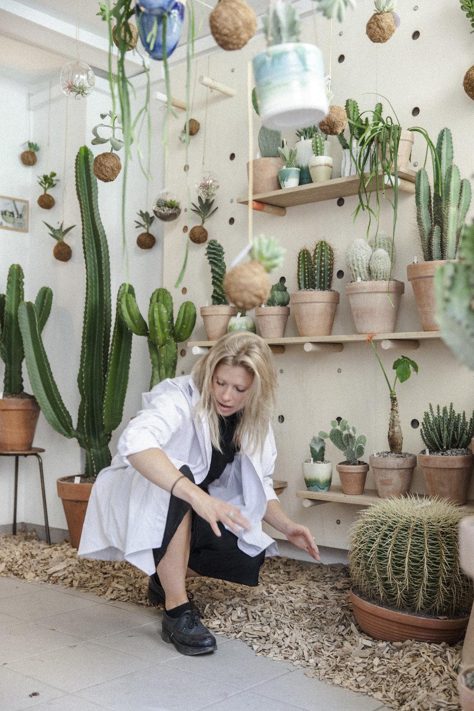 gro plantegamgasin kaktus københavn