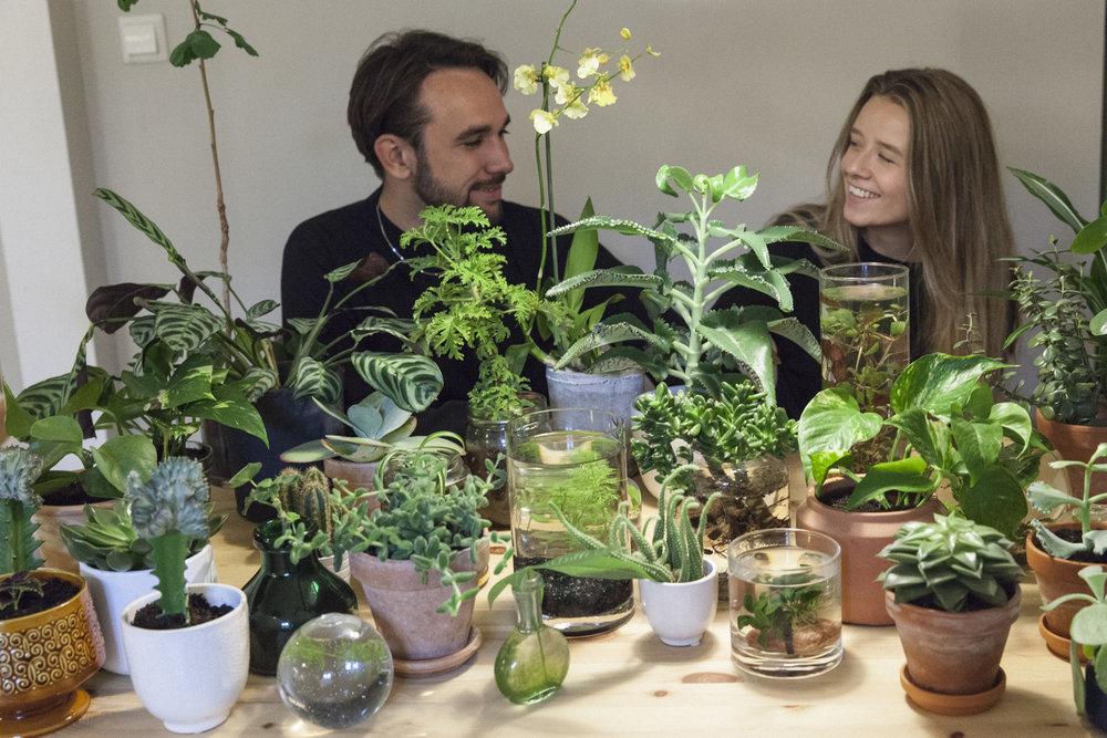 janni ragnhild plantemagasinet gro planter
