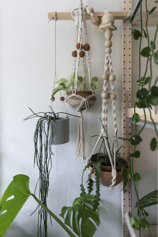 Plantemagasinet GRO Jenny Leite-Vikra