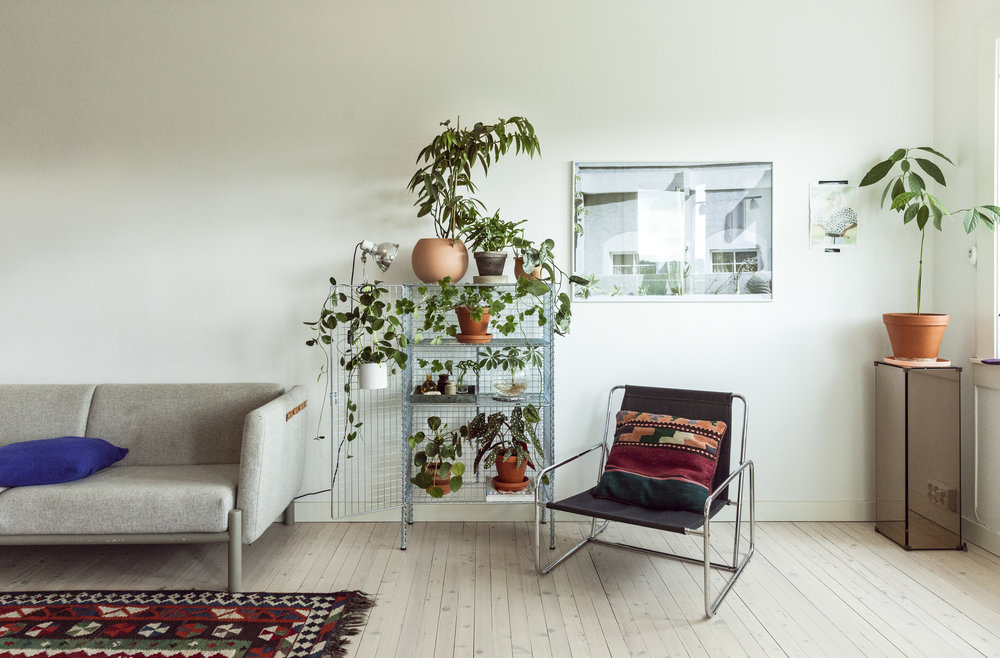 IMG_2066_GRO_IKEA_29_08.JPG