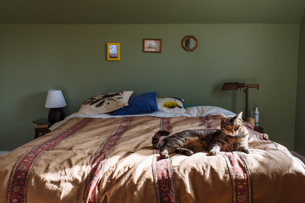 Couple-home-portrait-cat-on-bed-copyright-Elisabeth-Waller.jpg