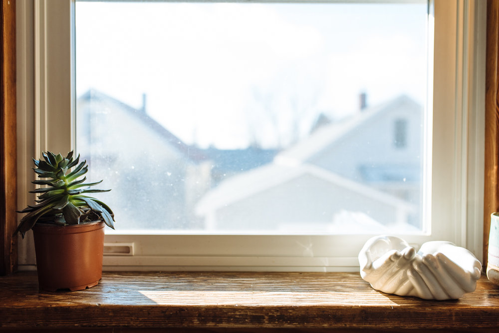 window-©-Elisabeth-Waller-2.jpg