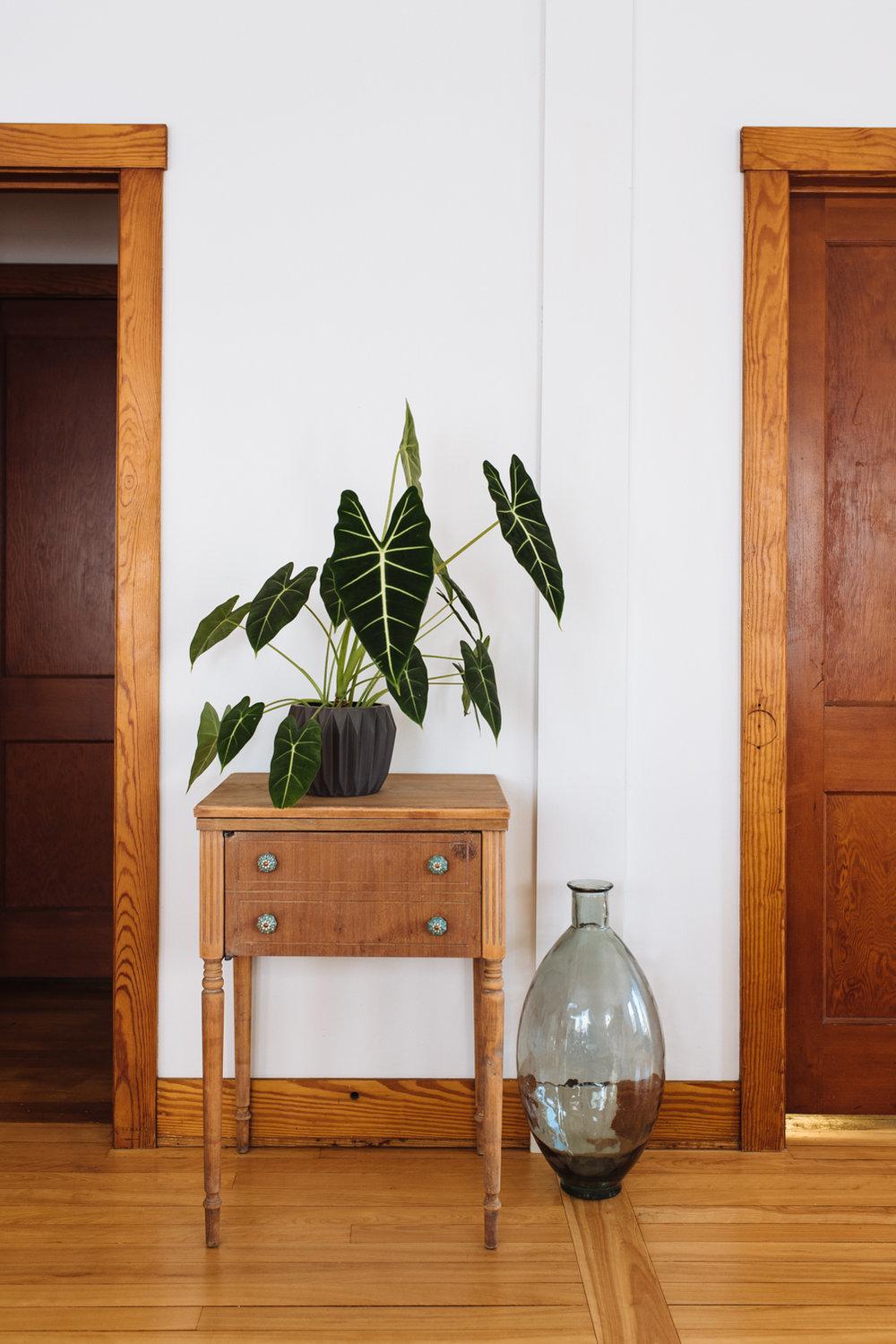 plant-on-stand-glass-vase-©-Elisabeth-Waller-44.jpg