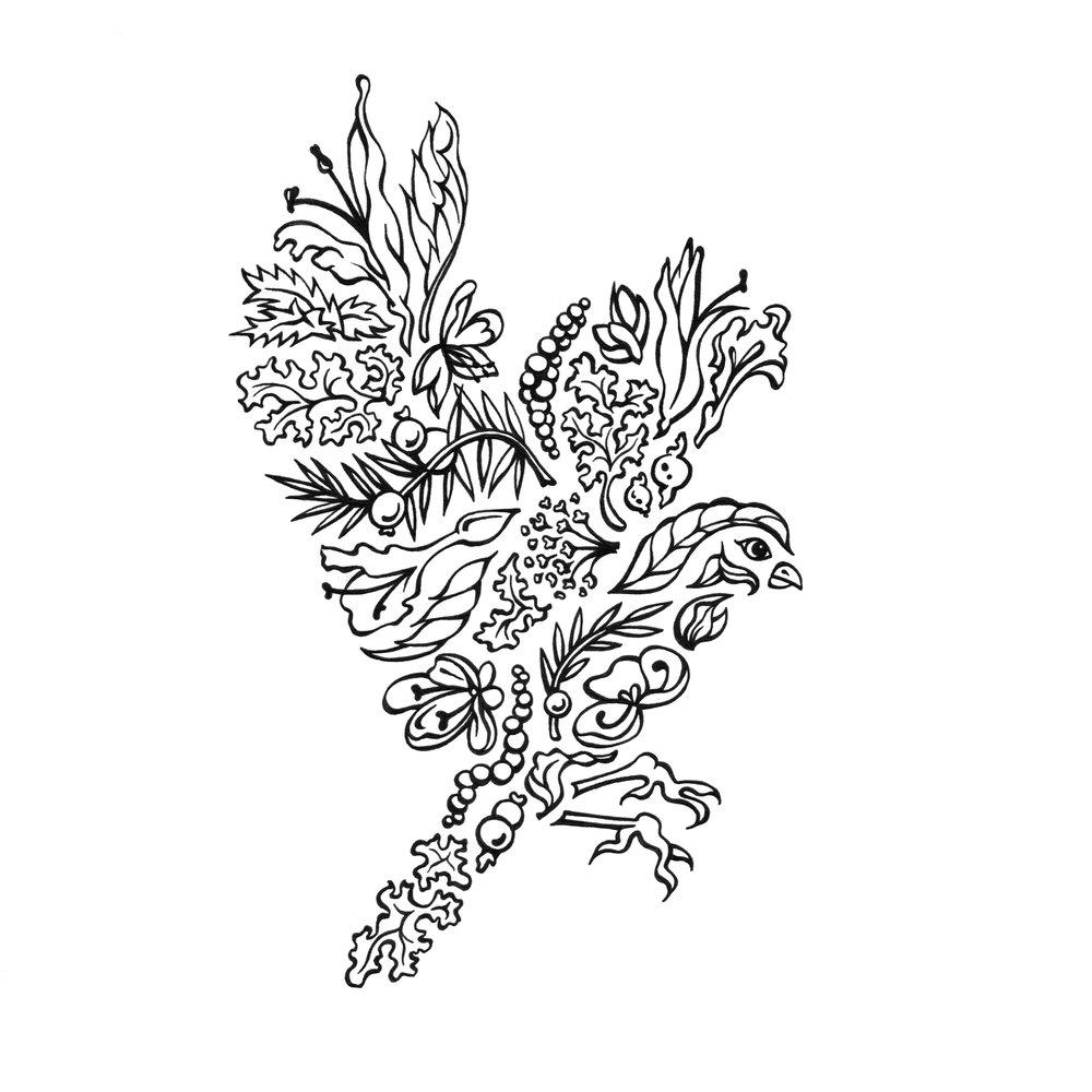 """Elizabeth Amirpour   The following is placeholder text known as """"lorem ipsum,"""" which is scrambled Latin used by designers to mimic real copy. Suspendisse nec congue purus. Nullam sit amet nisi condimentum erat iaculis auctor. Vestibulum ante ipsum primis in faucibus orci luctus et ultrices posuere cubilia Curae. Nulla eu pretium massa. Vivamus sit amet semper lacus, in mollis libero."""