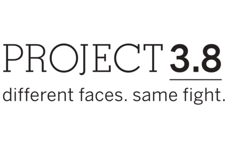 project 3.8