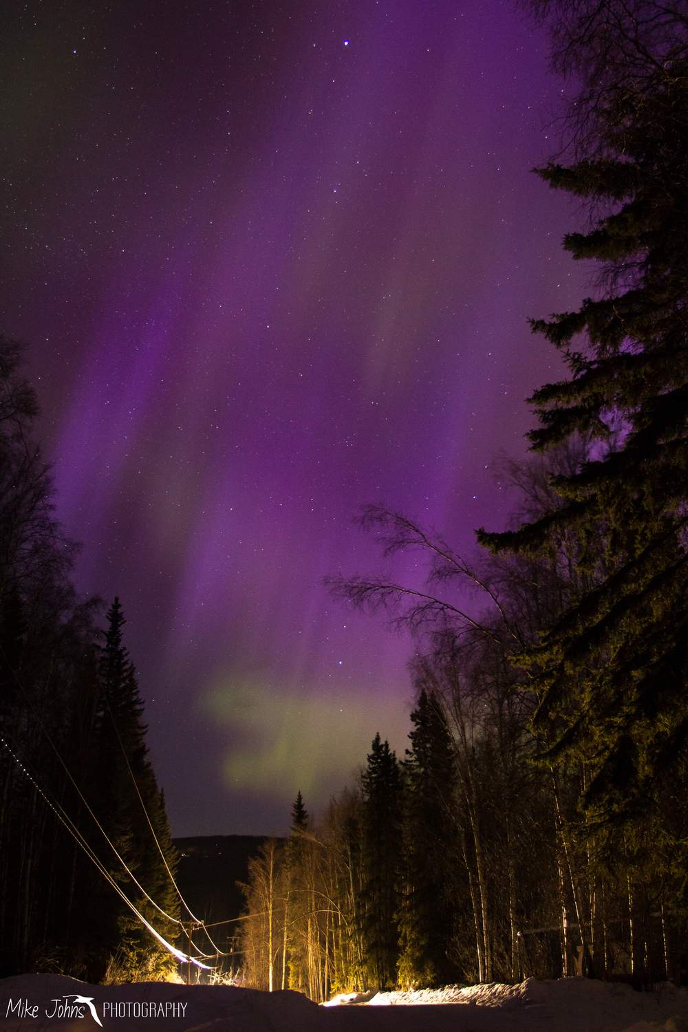 Purple Aurora