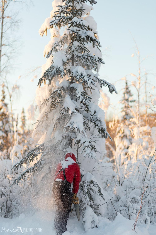 christmas-4710.jpg